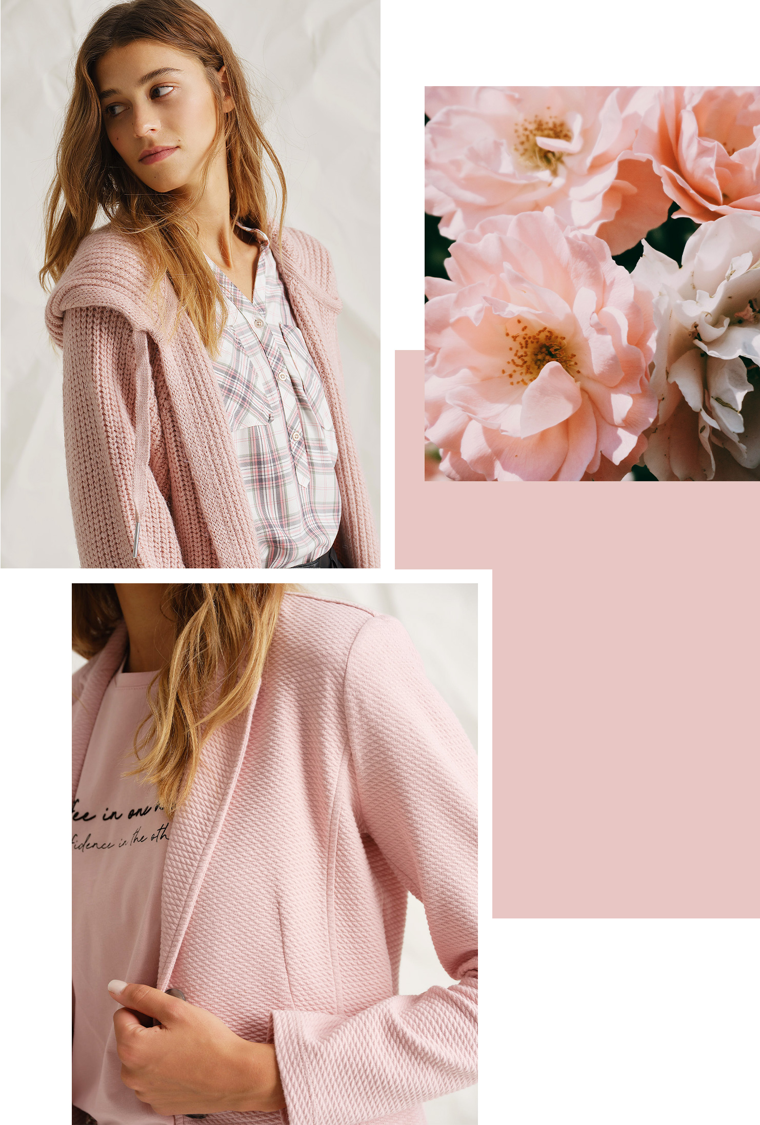 Color of the Month - Fresh Rose